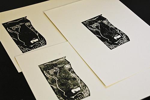 Bear Portrait Prints