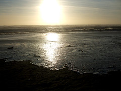 Onda lunga (Birnardo) Tags: roma italia mare inverno ostia spiaggia vento lazio onda otw digitalcameraclub birnardo dragondaggerphoto bomboetosky