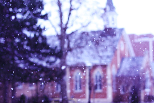 003/365: the first snow.