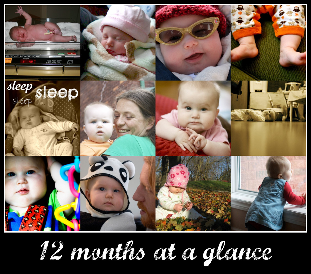 12 months at a glance
