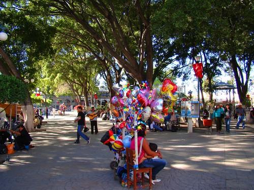 Parque de Tehuacán, Pue. (6)