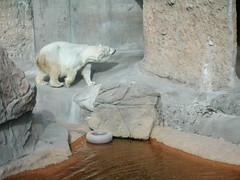 Zoo of Denver  DSCN0139_1