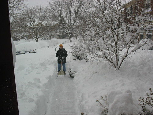 Feb 2010 209