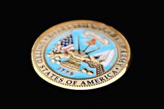 (046/365) U.S. Army Coin