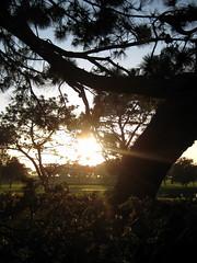 Sunset (iamasongbird) Tags: lodge pines torrey the