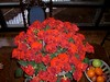 flower-bouquet 11 (55roses) (2) (Wortra) Tags: february09