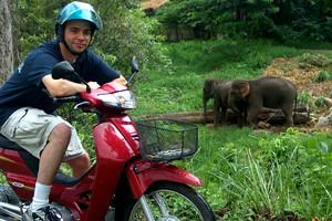 wyatt and elephants