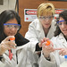 Science Careers in Search of Women 2009 by Argonne National Laboratory, on Flickr