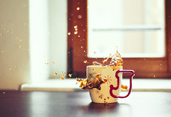 Cookie Splash #1 (Meyer Felix) Tags: cup tasse coffee 30 cookie 14 kaffee sigma olympus starbucks splash e410