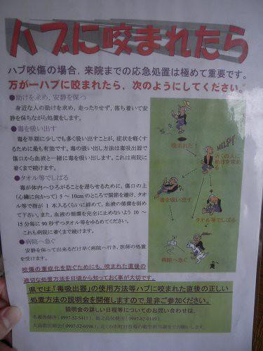 HABUS(鶏飯)@奈良市福智院町-11