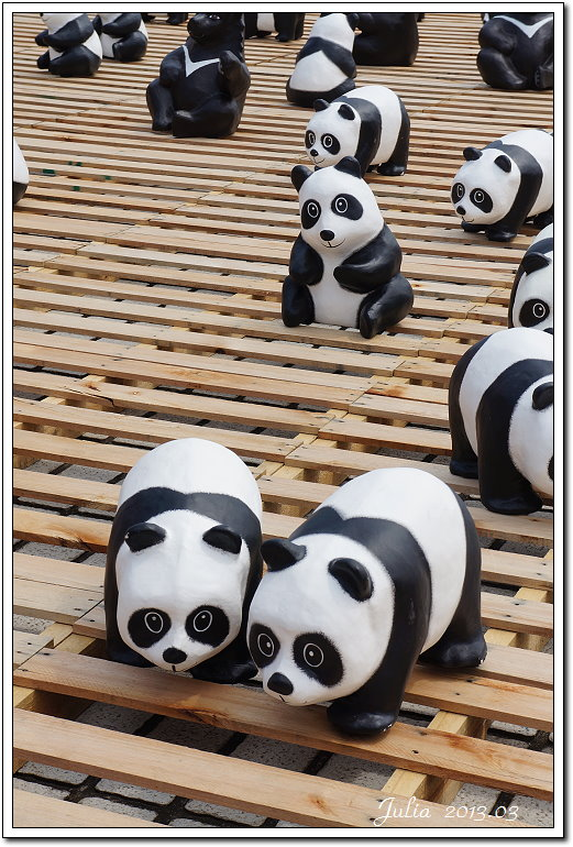 1600貓熊世界之旅 (9)