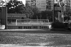 Wentworth Park Dog Track (Geoff A Roberts) Tags: park street leica bw dog greyhound white black film 35mm lens photography photo nikon track photographer scanner geoff no candid parking sydney streetphotography australia rangefinder racing m wentworth 100 mp roberts 135 5000 agfa rodinal doggies coolscan glebe 135mm 24hrs hektor efke streetphotographer leitz kb100 5000ed 45135 geoffroberts
