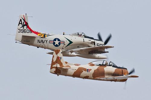 Warbird picture - A-1 Skyraider & T-28 Trojan