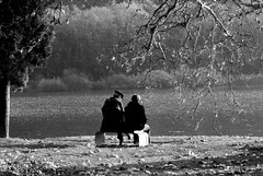 Look at the lake (Elly212) Tags: autumn bw panorama lake fall water senior bench landscape lago nikon bn persone older acqua autunno toblino anziani panchina nobember d5000 bwartawards nikonflickraward nobembre