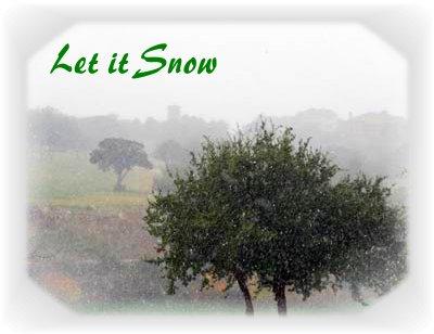 Austin-Snow-1