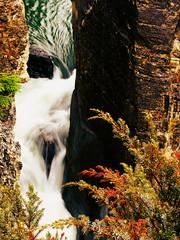 Sunwapta Falls, Jasper National Park (Gazzy5) Tags: jasper falls sunwapta