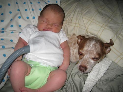 Planck & Maegwin snuggle