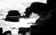 Hitting the Coastline (P.E.S.H.) Tags: newzealand coast rocks whitewater waves cliffs nz limestone coastline punakaiki pancakerocks highway6 crashingwave 192dayslater