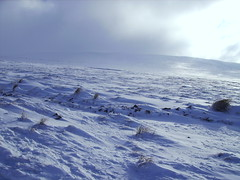 3-1-10 Brecon 00016 (bluebuilder) Tags: winter brecon penyfan 3110