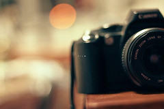 330/365: Film ([ embr ]) Tags: camera slr film canon lens eos gear strap 365 dslr 888 50mmf18 project356 1000d