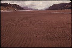 Beach Is a Part of the River Beds on the Columbia River Never Seen before and Exposed More Than Three Months Because of a Lack of Precipitation the Previous Year. This Scene Is at Rooster Rock State Park 18 Miles East of Portland 10/1973