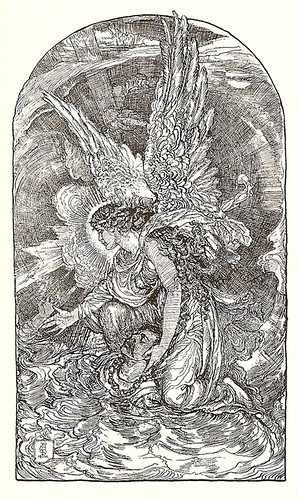 Undine, the dove.