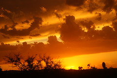 Final de tarde (Anselmo Garrido) Tags: sunset sky sol clouds landscape stock paisagem entardecer serto flickrstock