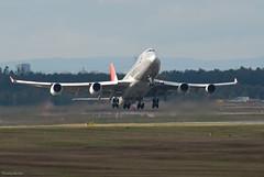 JAL Cargo Boeing 747-446F (SCD) JA401J (36855) (Thomas Becker) Tags: japan airlines jal cargo boeing b747446fscd b747446f b747446 b747400fscd b747400f b747400 b747f b747 747446fscd 747446f 747400 747400fscd 747400f 747f 747 ja401j cn33748 ln1351 170904 n5022e 121004 jai jl6422 tokyo nrt fraport flughafen airport aeroport aeropuerto aeroporto fra eddf frankfurt plane spotting aircraft airplane avion aereo  vliegtuig aviao uak  samolot flugzeug luftfahrzeug germany deutschland hessen rheinmain nikon d200 tamron 200500 091018 geotagged geo:lat=50039523 geo:lon=8596970 aerotagged aero:airline=jal aero:man=boeing aero:model=747 aero:series=400 aero:special=f aero:special=scd aero:tail=ja401j aero:airport=eddf twitter