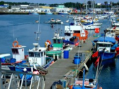 « La Bretagne en cartes postales, 2007 » (Chti-breton) Tags: port couleurs bretagne concarneau bateau ponton finistère pêche portdepêche bateaudepêche pêchecotière