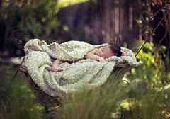 In the Garden ({jessica drossin}) Tags: baby outdoors naturallight explore newborn frontpage sleepingbaby jessicadrossin jessicadrossinphotography jessicadrossintextures