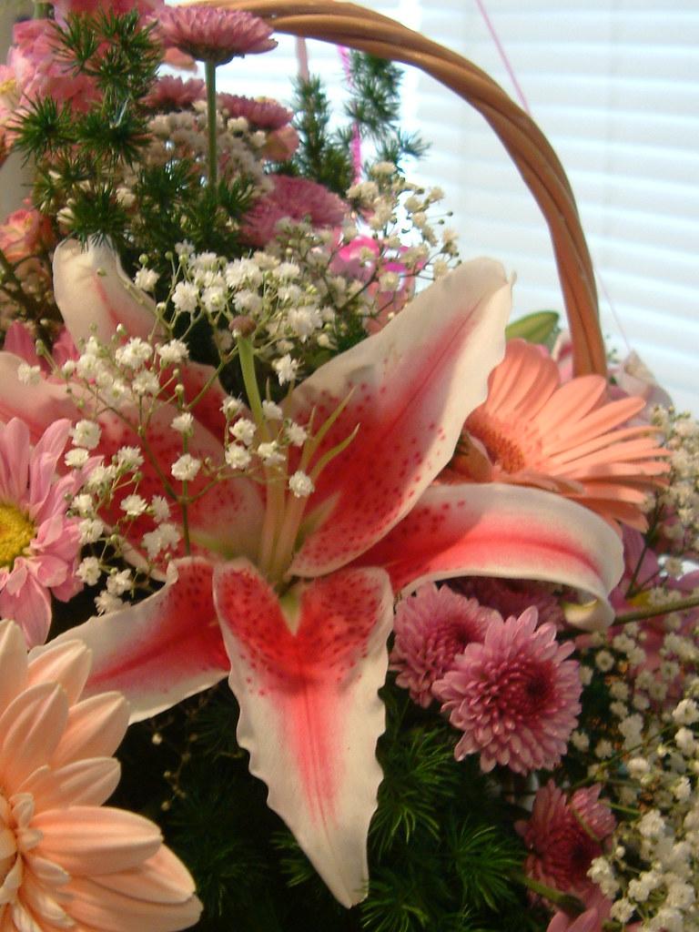 Hospital Flowers Etc. 14