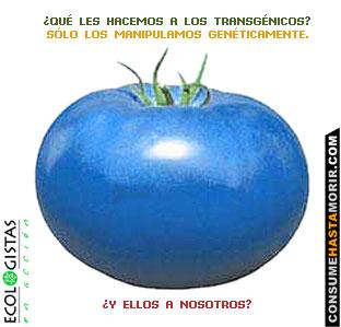 tomate_azul