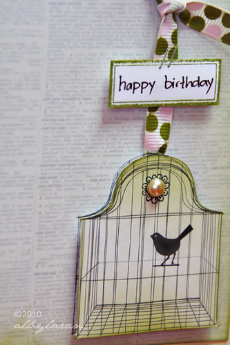 Birthday Birdcage 2
