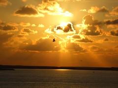 Sunset (++Rob++) Tags: sunset sea netherlands zonsondergang nederland zee texel