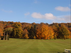 Autumn colours (waterside26) Tags: matlock