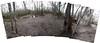 swamp 11 (aranreo) Tags: island scout tkf karankawa