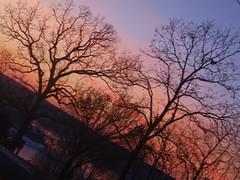 skelter (silhouettesgem) Tags: bellavista lochlomand