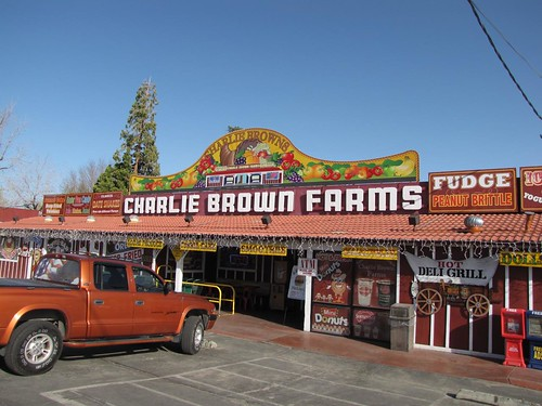 Charlie Brown's Farm-1