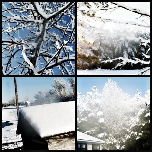 snow day 2 3