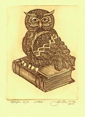 сова стандарт 001 (tim.spb) Tags: original bird etching postcard small ornament owl plates desigh открытки графика малые символ сова aquafortis формы офорт мудрости печатные