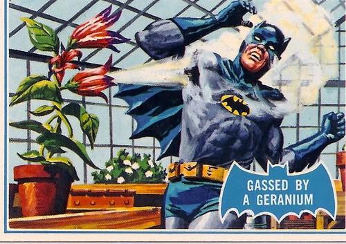 batmanbluebatcards_33_a