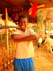 The happiest butcher in the world- Makkah (Mystapaki) Tags: cattle sheep sudan butcher mina saudi arabia nigeria jeddah ethiopia abaya riyadh mecca makkah hajj kaki ksa najd madinah hejaz umra dammam asir hofuf tawaf thobe muzdaliffah