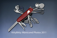 Swiss Army Kitchen (KittyBitty: Manicured Photos) Tags: utensils kitchen metal photoshop knife kitty australia melbourne bitty pocketknife manicured swissarmyknife kittybitty1 kittybitty manicuredphotos