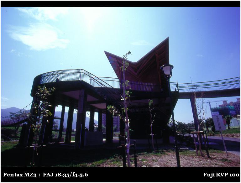nEO_IMG_社青003