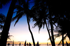 dreaming (marin.tomic) Tags: travel light sunset sea sun beach water silhouette palms asian island boat nikon asia southeastasia philippines palm insel tropical sail boracay tropics visayas gettyimages philippinen d40