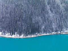 Peyto In Winter (Ben  H.) Tags: blue winter lake snow canada banff peyto