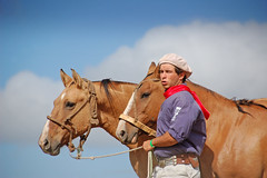 Gateados (Eduardo Amorim) Tags: brazil horses horse southamerica brasil criollo caballo cheval caballos cavalos pelotas pferde cavalli cavallo cavalo gauchos pferd riograndedosul pampa hest hevonen campanha brsil chevaux gaucho  amricadosul hst gacho  amriquedusud  gachos  sudamrica suramrica amricadelsur  sdamerika crioulo caballoscriollos criollos   costadoce americadelsud  crioulos cavalocrioulo americameridionale caballocriollo eduardoamorim cavaloscrioulos iayayam yamaiay