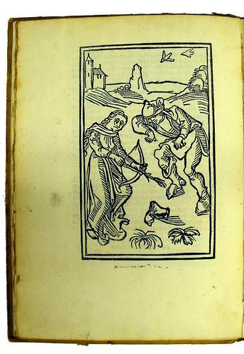 Woodcut in Molitoris, Ulricus: De lamiis et phitonicis mulieribus