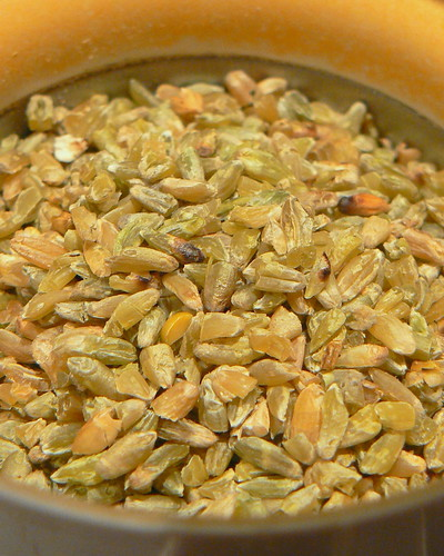 Freekeh in the grinder