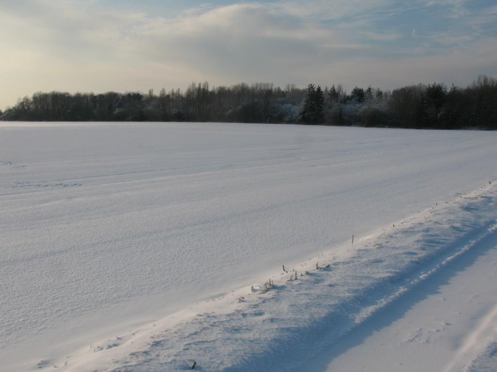 [White spirit] Vive la neige 78 4194797121_a4ec1b140c_o
